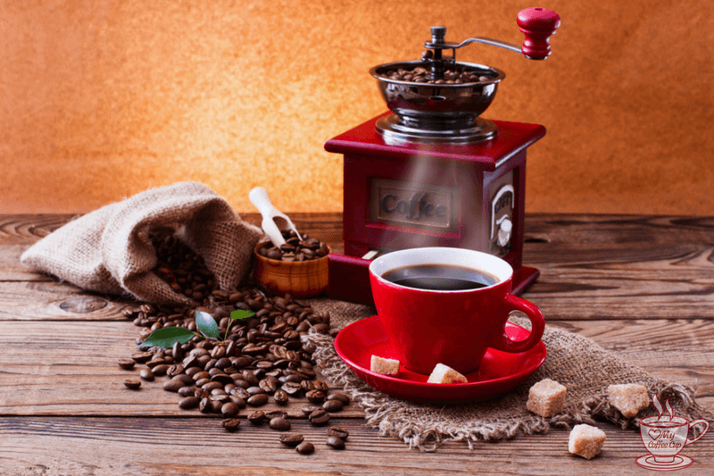 Top 10 Best Coffee Grinder For French Press Buying Guide