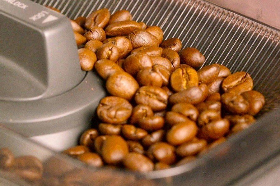 Coffee Beans in a Coffee Maker with Coffee Grinder