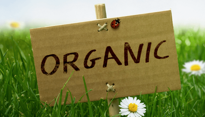 Organic Sign In A Field With Daisies