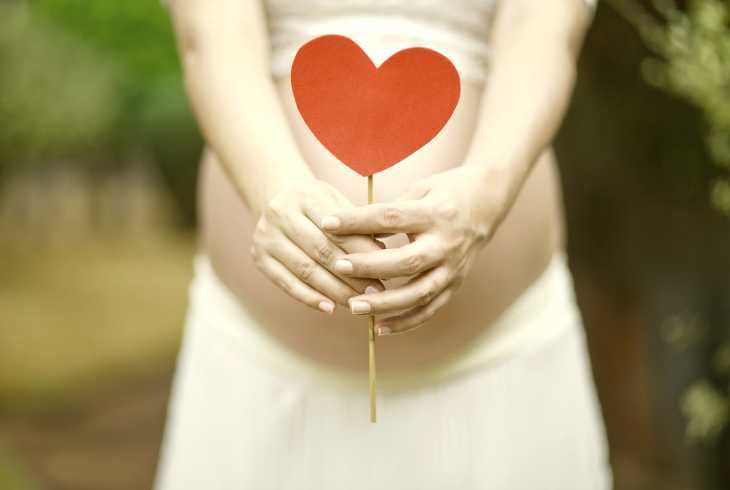 Pregnant woman holding a healthy heart
