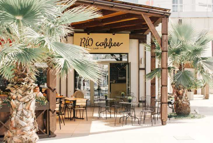 Unique coffee shop bar with palm trees